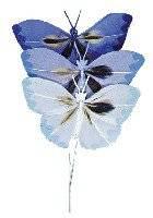 Vlinders van veren blauwtinten | Rayher