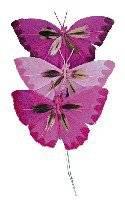 Vlinders van veren d.rozetinten | Rayher
