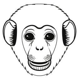 Crazymals masker aap 14030036 | Artemio