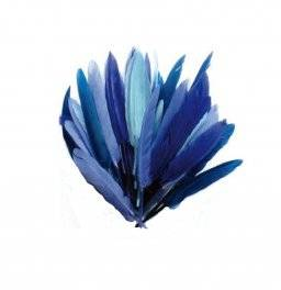 Plumes veren blauwtinten 460200