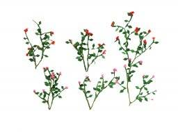 Hoscale rose vines 95539 | JTT