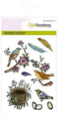 Clearstamps 1239 bird feathers | Craftemotions