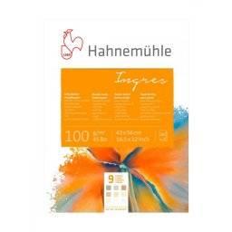 Ingresblok gekleurd   Hahnemuhle